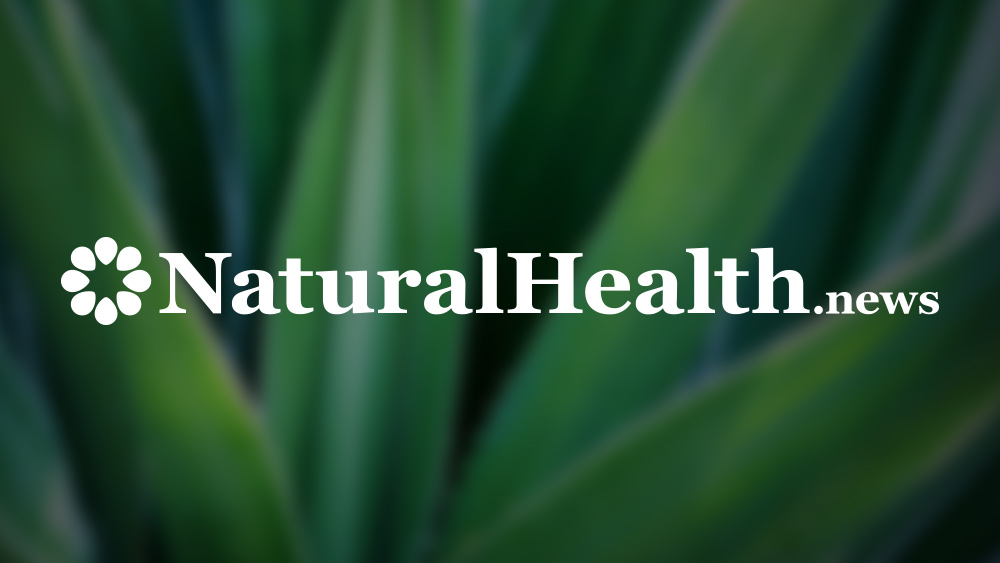 Natural Health News  -  Natural Health News – Natural Health Information