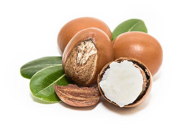 אגוזי שיאה