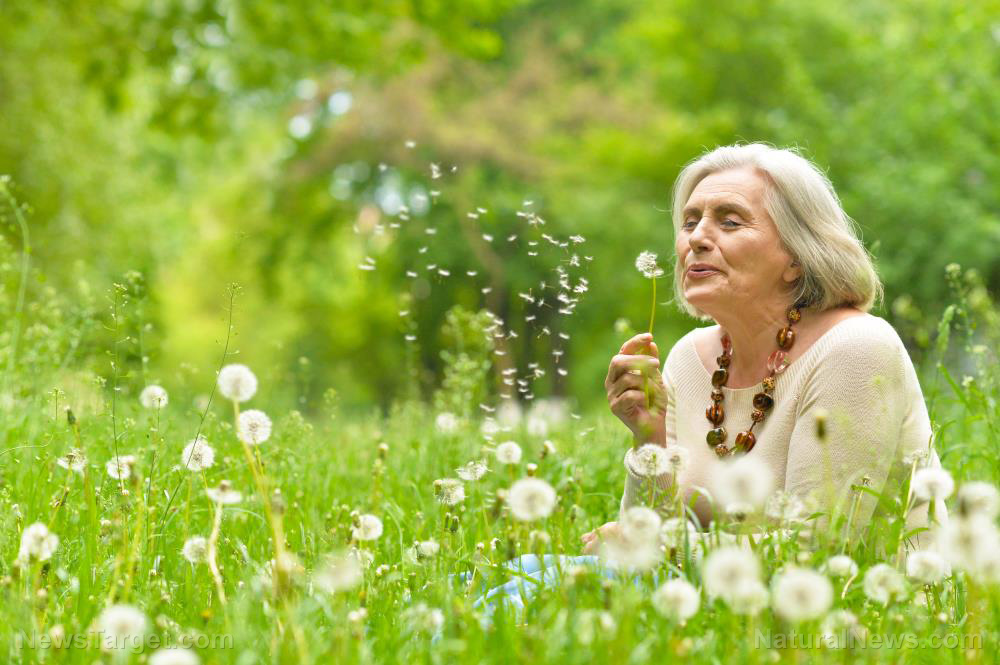 Nature therapy as a lifestyle intervention offers many benefits