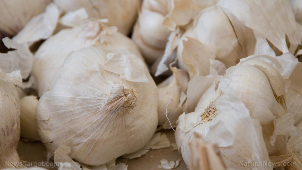 Low temperature-aged garlic associated with anti-fatigue effects in animal study